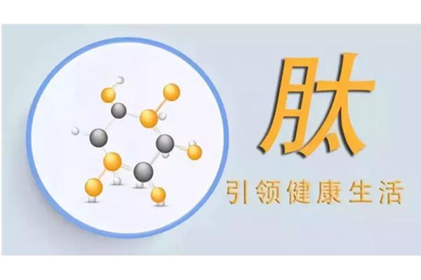 成都专业活性小分子肽厂家