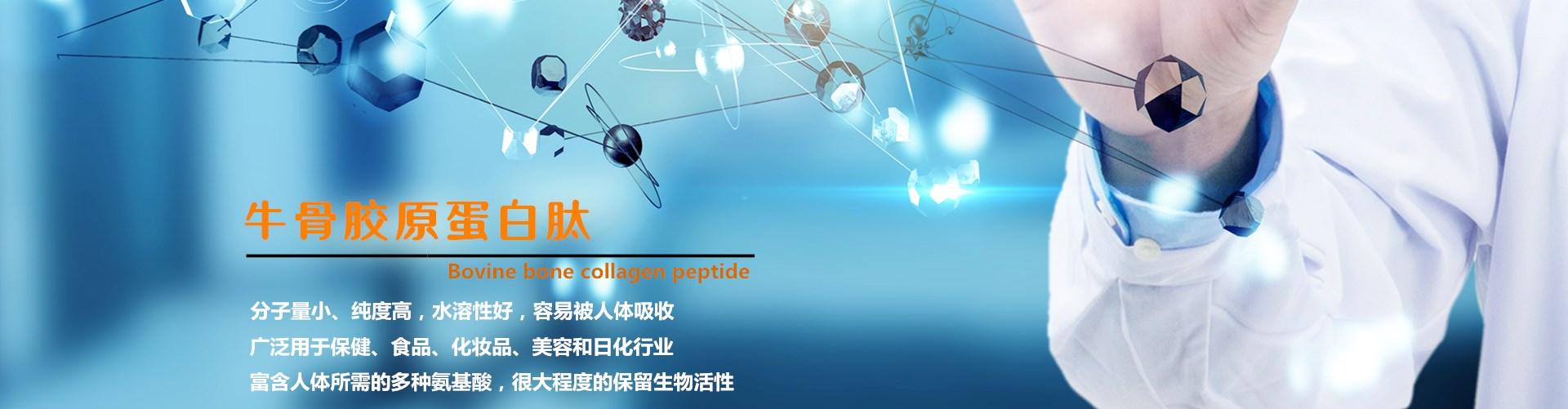 http://www.gsktsw.com/data/images/slide/20190912170843_694.jpg